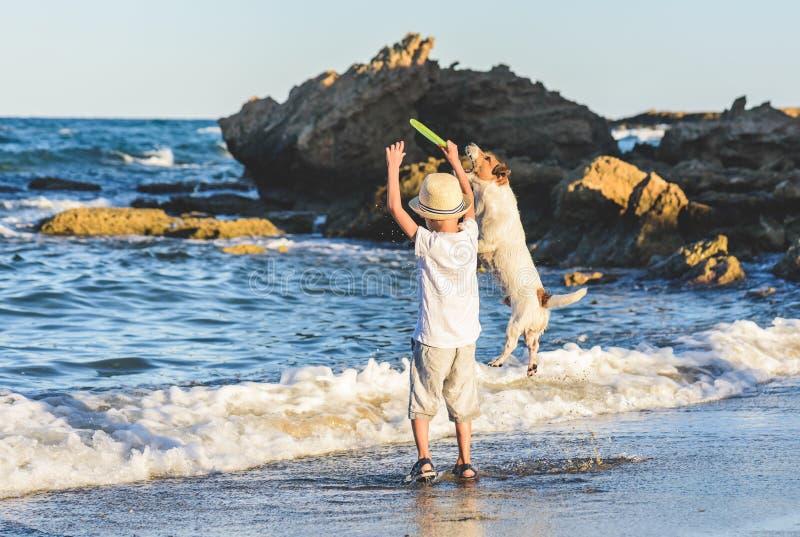 Bambino del ragazzino che giocano con il disco di volata ed il suo cane in acqua di mare fotografie stock libere da diritti