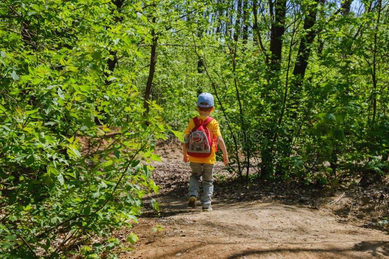 Bambino dello zaino che fa un'escursione verde di estate Infanzia fotografia stock libera da diritti