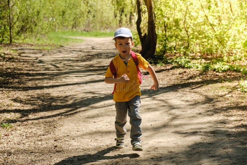 Bambino dello zaino che fa un'escursione verde di estate Prato fotografie stock
