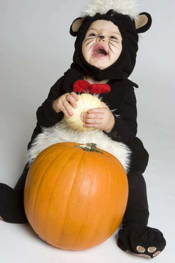Bambino di risata della zucca fotografia stock libera da diritti