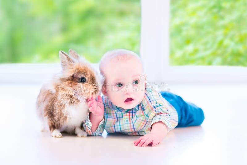 Bambino e coniglietto fotografia stock