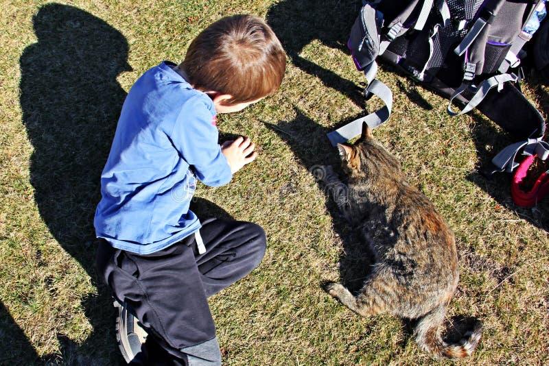 Bambino e gattino che giocano sulla terra fotografia stock libera da diritti