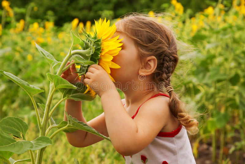 Bambino e girasole fotografie stock libere da diritti