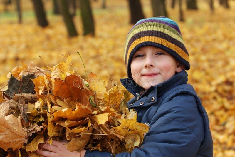 Bambino felice con i fogli di autunno immagine stock libera da diritti