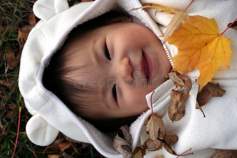 Bambino in fogli fotografia stock