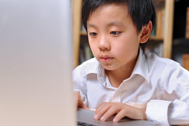 bambino in giovane età che lavora duro davanti al computer immagine stock