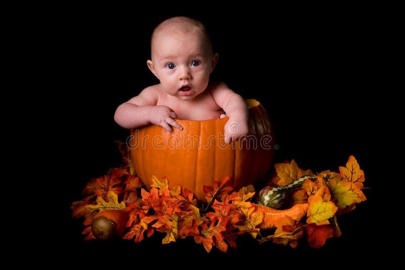 Bambino in grande zucca isolata sul nero immagini stock libere da diritti