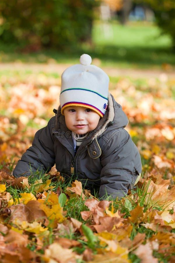 Bambino in legno di autunno fotografia stock