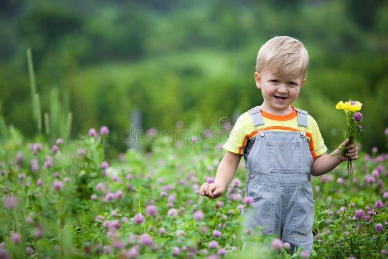 Bambino nel campo del trifoglio immagine stock