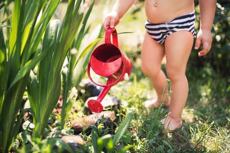 Bambino piccolo con la latta all'aperto in giardino di estate, fiori d'innaffiatura Un midsection fotografie stock