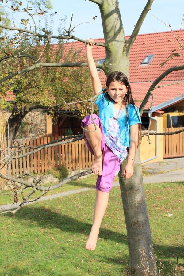 Bambino - ragazza che si siede sull'albero immagini stock libere da diritti