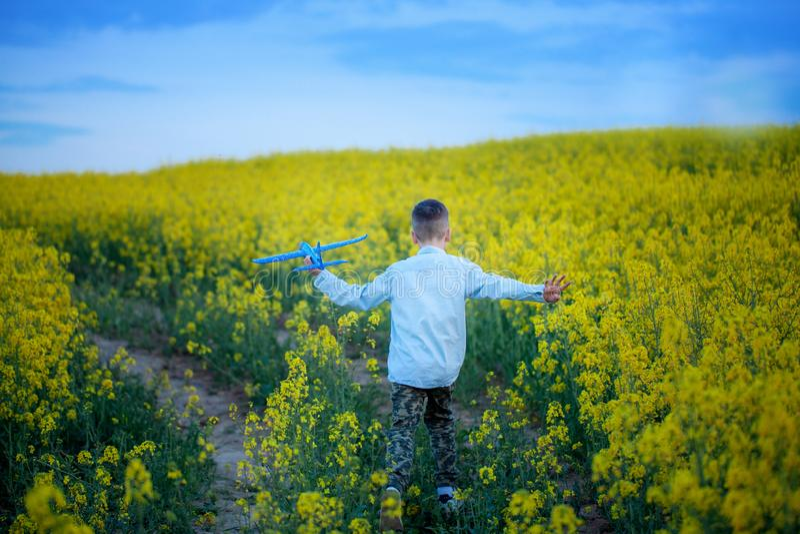 Bambino sveglio che cammina nel campo giallo un giorno di estate soleggiato Il ragazzo avvia l'aereo di carta Vista posteriore fotografie stock