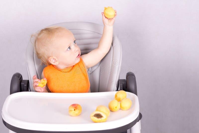 Bambino sveglio che mangia un'albicocca nella sedia del bambino contro i precedenti grigi immagini stock libere da diritti