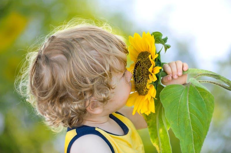 Bambino sveglio con il girasole su backgroun pieno di sole-verde fotografia stock libera da diritti