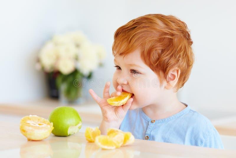 Bambino sveglio del bambino della testarossa che assaggia le fette e le mele arancio alla cucina immagine stock libera da diritti