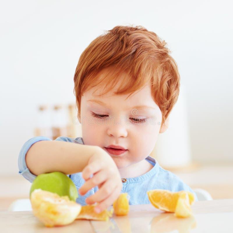 Bambino sveglio del bambino della testarossa che prova frutti dell'arancia e della mela fresca immagine stock libera da diritti