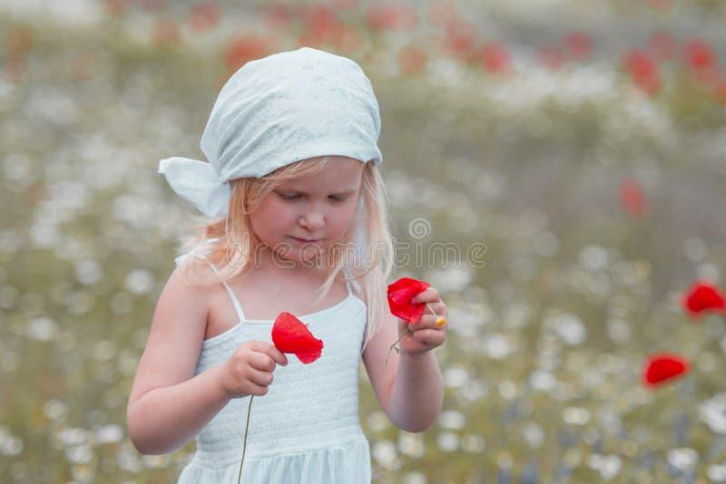 bambino in un campo di fiori immagine stock libera da diritti