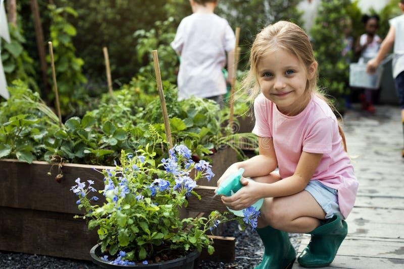 Bambino in un'esperienza ed in un'idea del giardino immagini stock libere da diritti