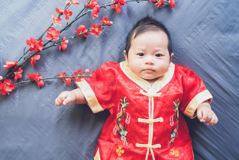 Bambino in vestito rosso sul panno blu con il fiore e lo sguardo nuovo anno del cinese di concetto fotografia stock libera da diritti