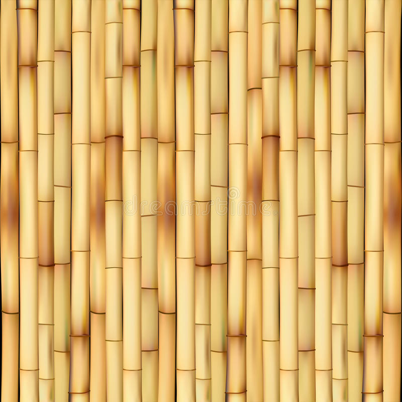 Bamboe vector illustratie