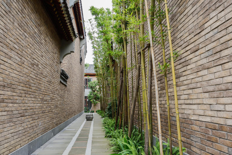 Bamboe in steeg tussen Chinese taditionalgebouwen stock foto