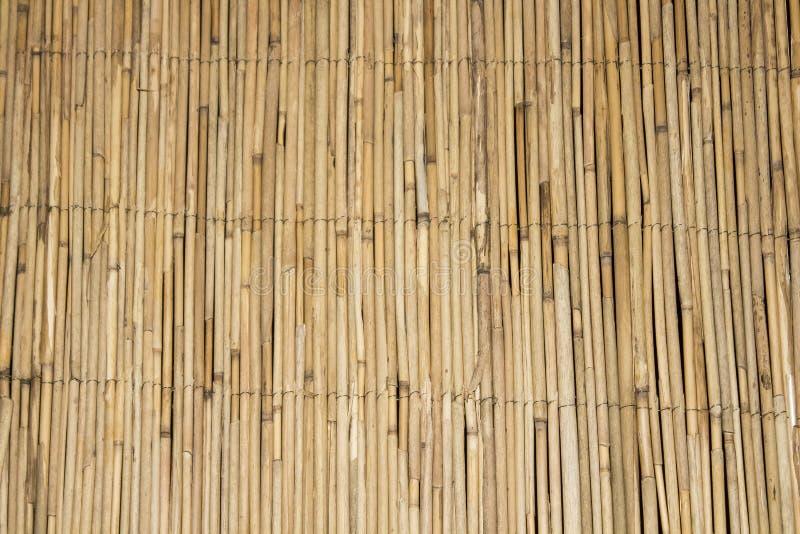 Bamboeachtergrond van bamboeachtergrond Bamboe achtergrondtextuur textuur van bamboeachtergrond vuile bamboetextuur als achtergro royalty-vrije stock fotografie