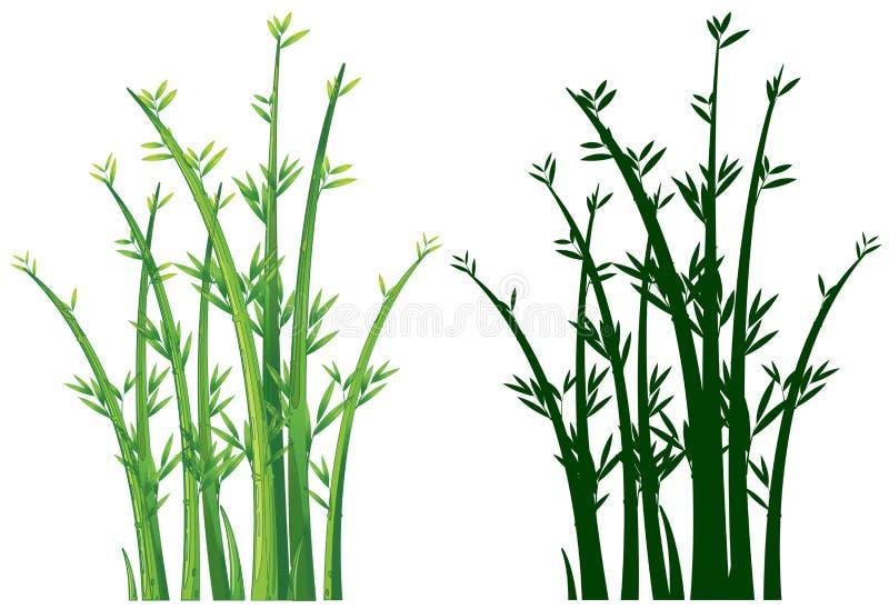 Bamboebomen in groen royalty-vrije illustratie