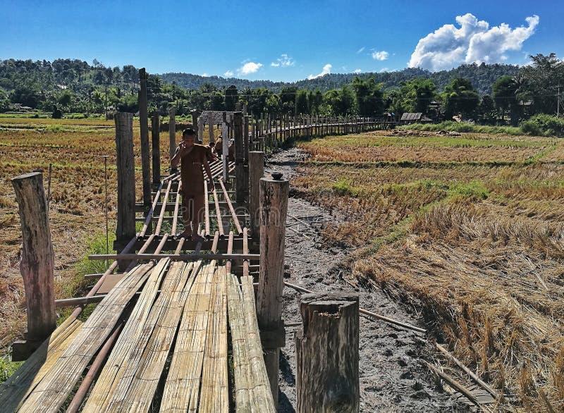 Bamboebrug stock foto's