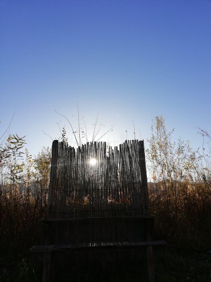 Bamboegordijnzonnestraal en blauw hemelideaal voor de achtergrond stock afbeelding