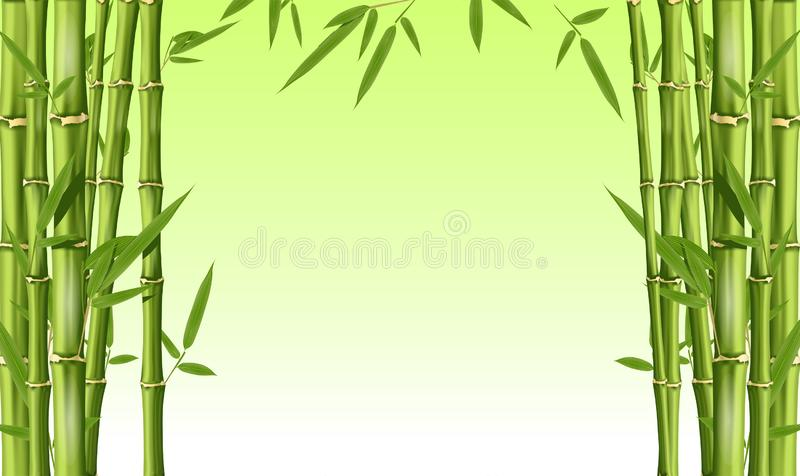 Bamboekader met lege ruimte - groene bamboestammen met bladeren stock illustratie