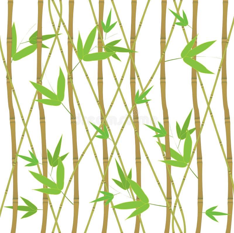 Bamboespruiten Geplaatst Eco Decoratief Element stock illustratie