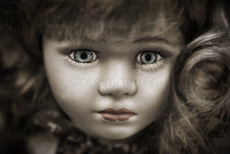 Bambola con Grey Eyes ed i capelli di Brown immagine stock libera da diritti