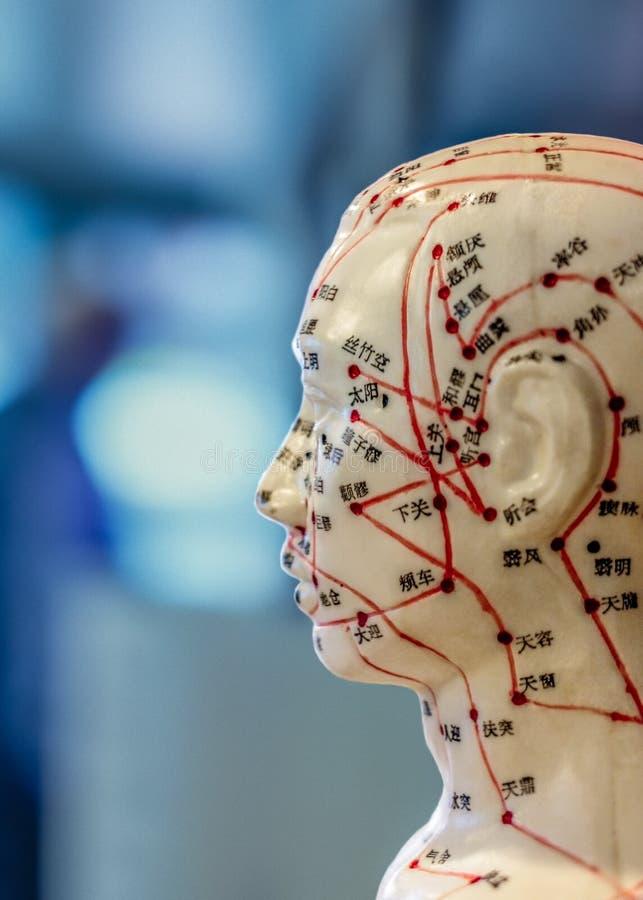 Bambola di agopuntura con le marcature in cinese su fondo vago immagini stock