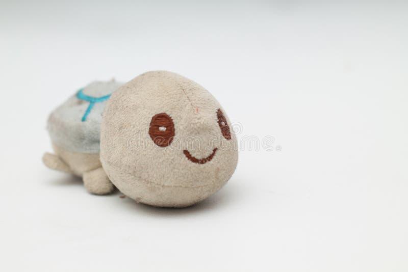 bambole della tartaruga, isolato, piccolo, sveglio ed adorabile, versione 1 immagini stock libere da diritti