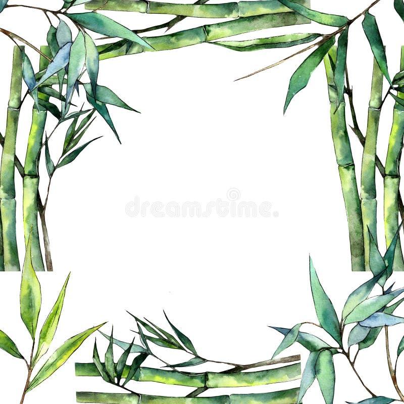 bamboo зеленые листья Листва ботанического сада завода лист флористическая Квадрат орнамента границы рамки бесплатная иллюстрация