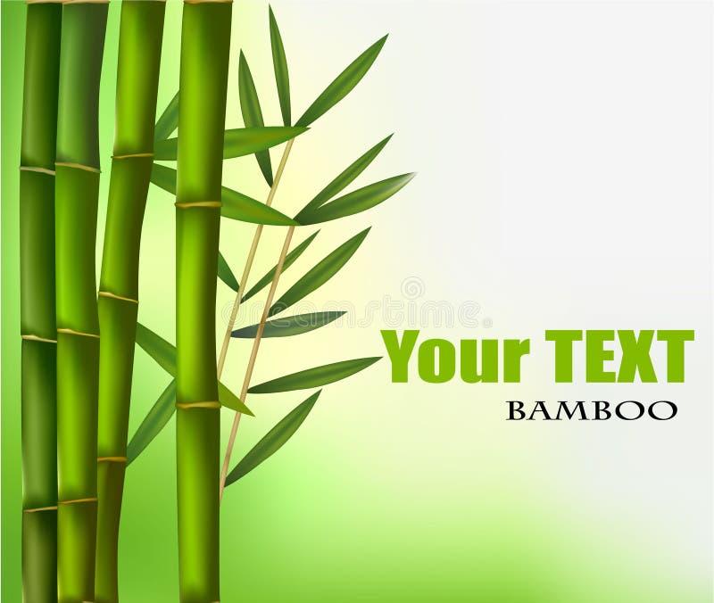 bamboo красивейший вектор граници бесплатная иллюстрация