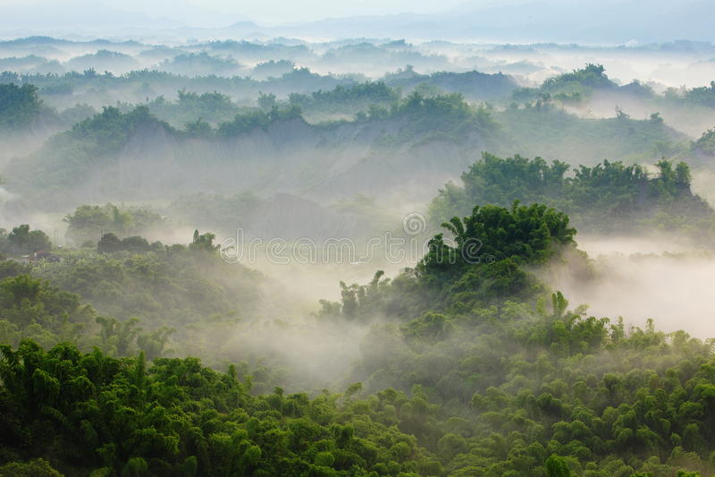 bamboo море утра зеленого цвета облака стоковые изображения