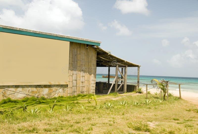 bamboo остров мозоли здания брига залива стоковое фото rf