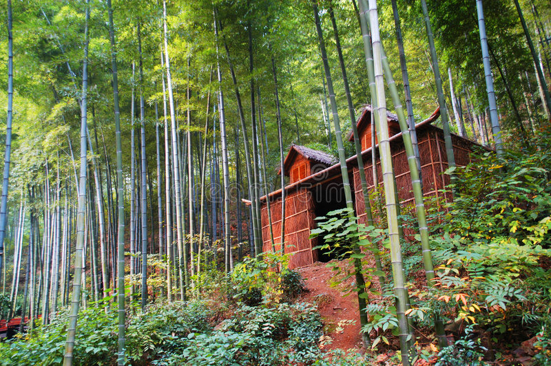bamboo пуща коттеджа стоковые изображения