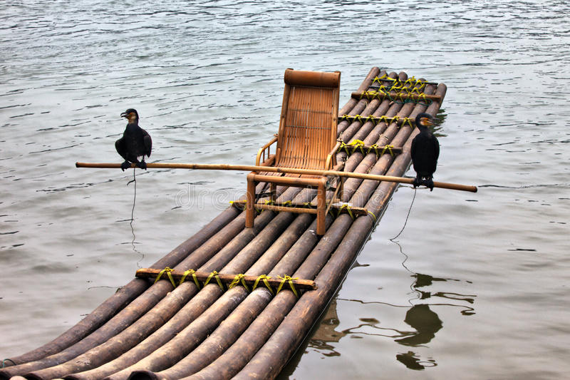 Download Bamboo сплоток cormorant стоковое изображение. изображение насчитывающей птиц - 17624619