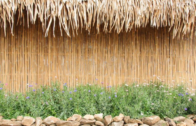 bamboo стена стоковая фотография rf