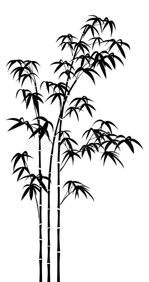 bamboo stock vector illustration of leaves tree black 14753098 bamboo stock vector illustration of