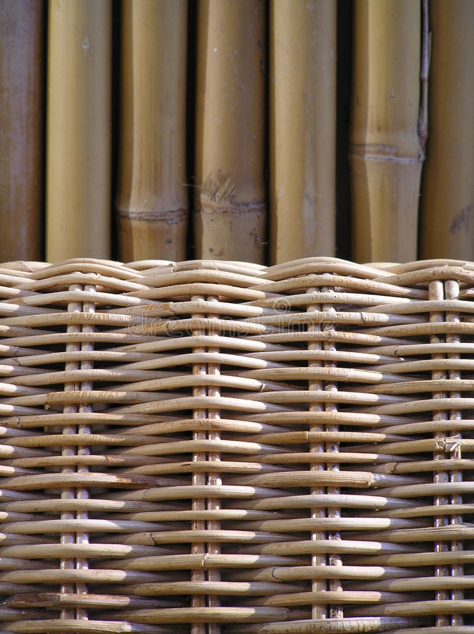 Download Bamboo stock photo. Image of natural, garden, bamboo, outdor - 150744