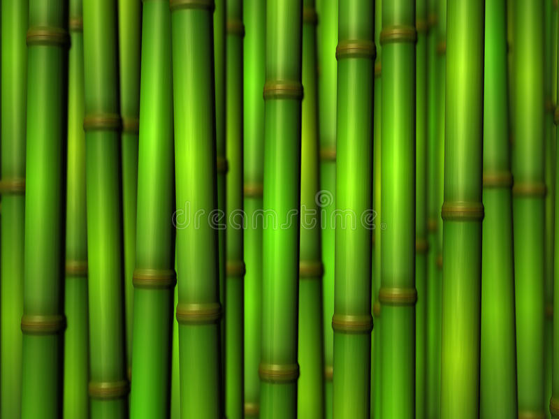 Download Bamboo stock illustration. Image of nature, tree, plant - 19552696