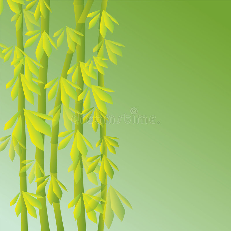 Bamboo stock illustration