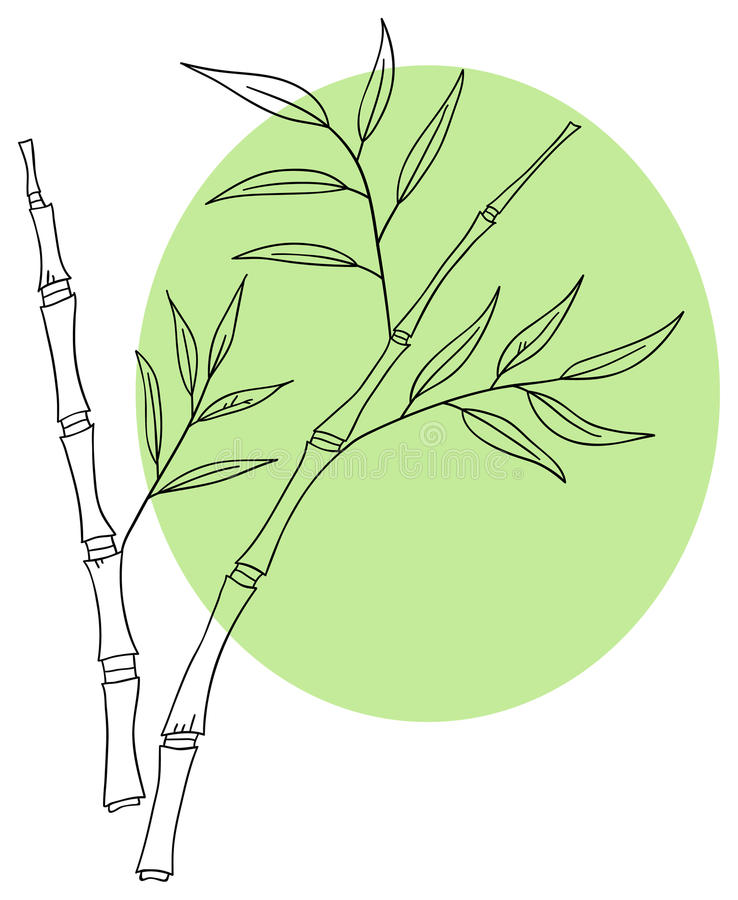 Download Bamboo stock vector. Image of relax, green, line, doodle - 25115030