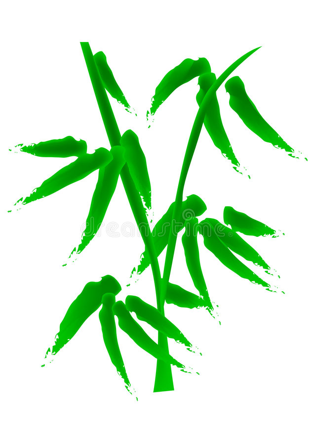 Download Bamboo stock vector. Image of festive, special, graphic - 3395479