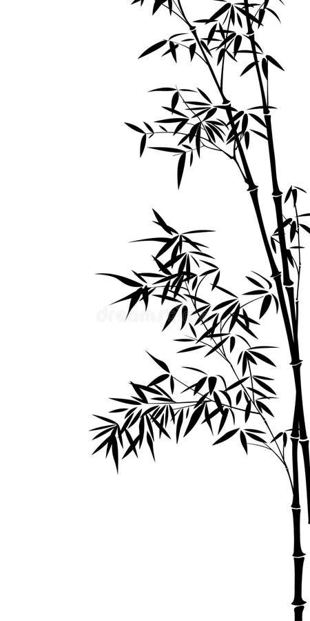 Free Bamboo Stock Photos - 8960063