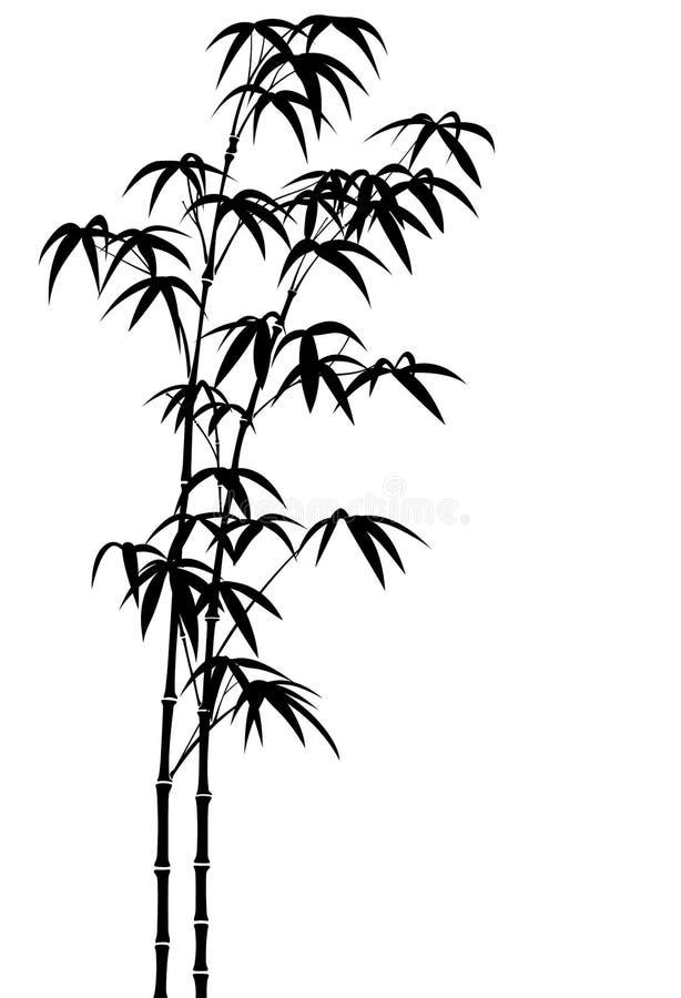 Free Bamboo Royalty Free Stock Photo - 9008265