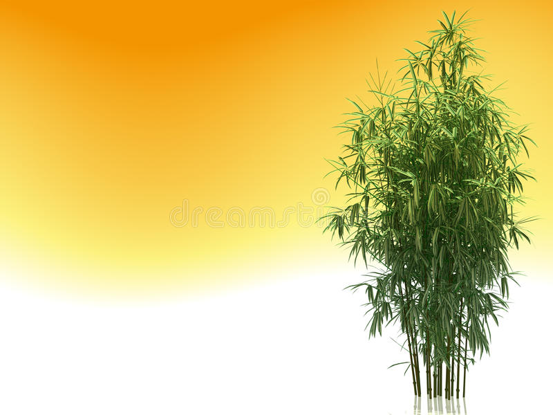 Download Bamboo stock illustration. Image of therapy, asian, korean - 9857208